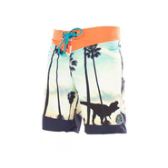 SACRAMENTO Boardshorts Picture dynosore photoprint