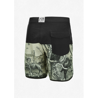 Picture Andy 17 Boardshort black