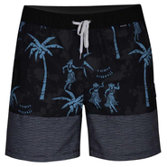 Hurley Aloha Only Volley 17 Boardshort black